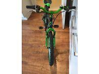 Unisex Children's Bicycle- Excellent Condition