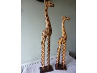 A Pair of supeb large wooden Giraffes hand carved 98cm + 78cm Tall
