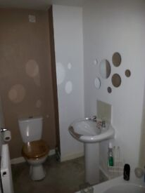 Recently Refurbished 1 Bedroom Ground Floor Flat (raised)