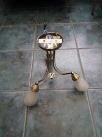 Venus gold 3 lamp ceiling light