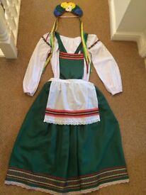 Fancy Dress Octoberfest Ladies costume