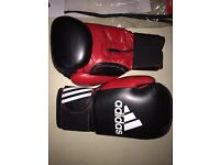 Adults 10oz boxing gloves
