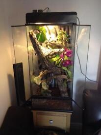 Vivarium reptile tank