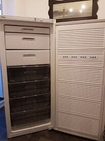 PROLINE upright, tall freezer for sale