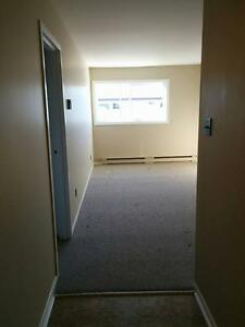 Roomy 1 bedroom just off Cashin Ave. St. John's Newfoundland image 3