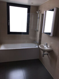 BEAUTIFUL NEW BUILT 2 BED FLAT (DSS WELCOME)