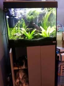 Fluval 90 litre Aquarium