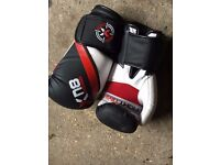 Punch Bag & Gloves for sale