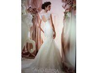 Stunning David Tutera Wedding Dress