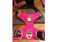 Ruffwear dog harness (L/XL)