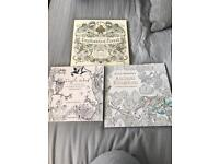 3x adult colouring books