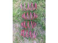 Vauxhall Astra h/g mk5/mk4 eibach 60mm lowering springs