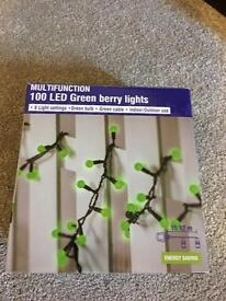 LED Green Berry Lights for indoor or outdoor use