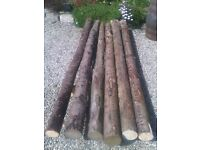 rustic poles ideal for raised beds and landscaping