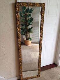 GOLD ORNATE FRAME LONG LENGTH WALL MIRROR