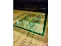 New aquarium coffee table fish tank