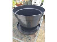 Plastic Plant Pots 15 Litres + Free Tray