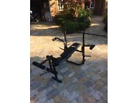 Pro Fitness Bench and Bar