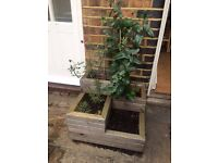 FREE! 2 wooden garden planters and one stone window box, collection only!
