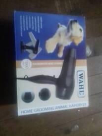 Animal hairdryer