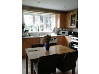 Double en suite in beautiful houseshare, near UEA, NO AGENCY FEES