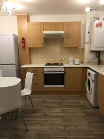 Twin/Double room available to share with Hungarian man in Roehampton bills.inc/85£pw