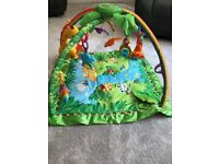 Baby Play Gym - Rain Forest Fisher Price, £5