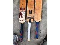 Cricket Bats (three of them)