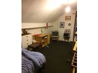 Large Bedsit in Netheredge Includes ALL BILLS except electric S7 studio 1 bed room flat tolet