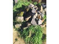 Rockery rocks