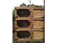 Two tripple decker hutches, ideal for breading guinea pigs or rabits. £60 each.