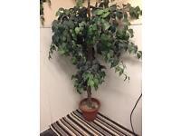 Artificial house plants