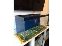 3ft fish tank aquarium with lid