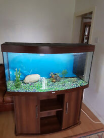 4FT JUWEL BOW FRONTED 280 LITER FISH TANK AND STAND FOR SALE,FULL SET UP