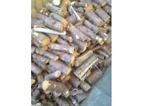 Large quantity of fire logs fully seasoned.