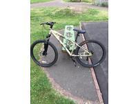 Oxide mountain bike