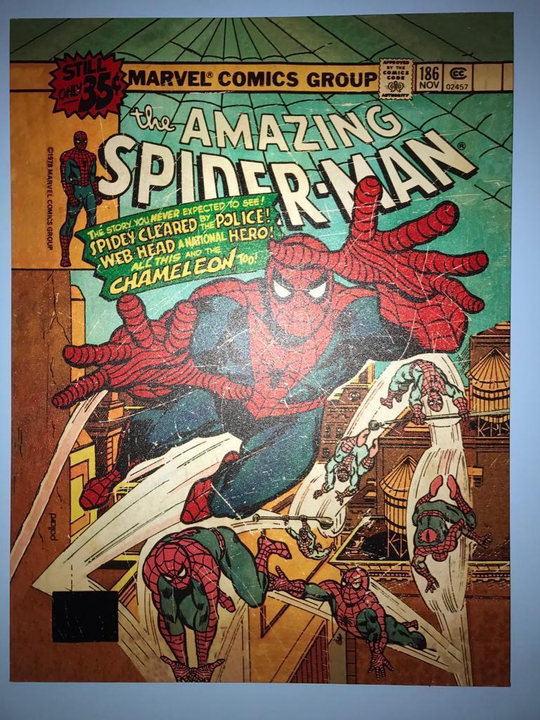Spider-Man large canvas