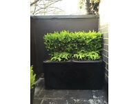 Fibreglass Trough Flower Planter Matt Black Medium 80x40x40cm