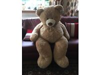 Large teddy