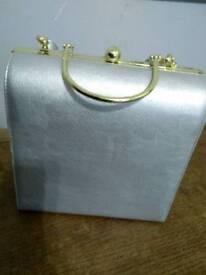 Evening silver bag