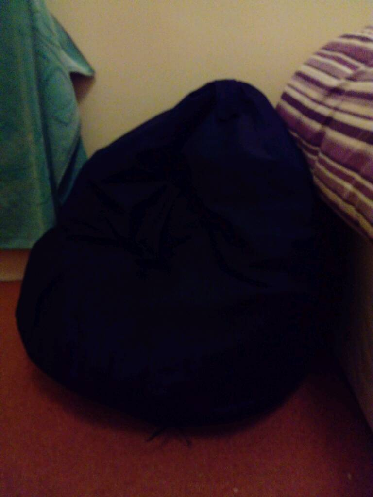 Large child bean bag chair