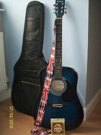 Falcon FG100BL Guitar (Blue/Black)
