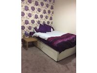Double Rooms available for female student/ professional