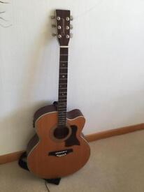 Acoustic/Electric guitar