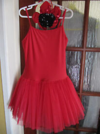 Dance Lucy Red Ballet Tutu Dress- Dancing Daisy- Adult Medium (10-12) - vgc- £8