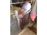 "Farrington WH Saddle 16.5"""