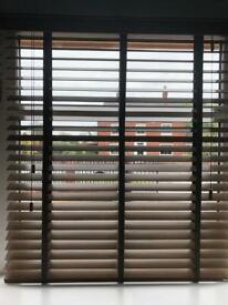 Window horizontal blinds