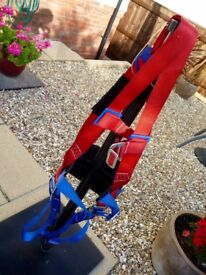 3 Point 'Comfort' Safety Harness with back support (One-size) 'Only Used once'