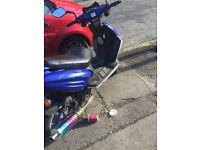 Direct bike/dB 50/80
