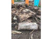 Wood, Timber, Free